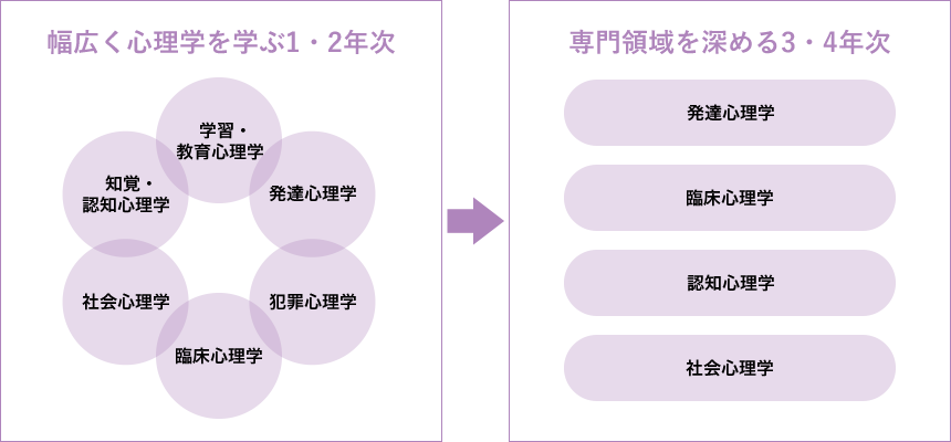 学部を見てみる|心理学のそき見BOOK|東京未来大学